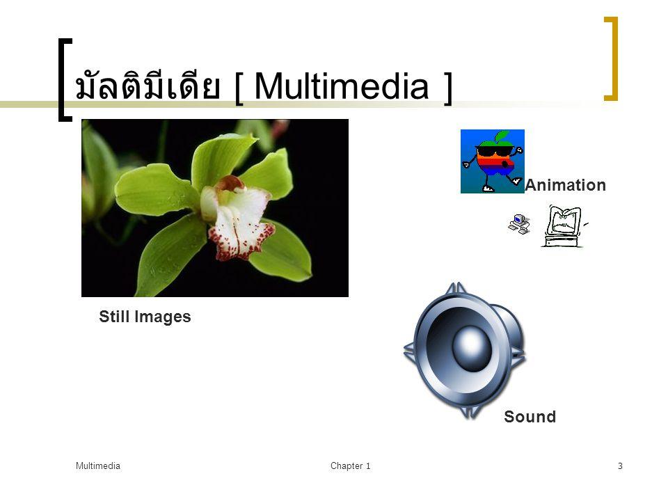 มัลติมีเดีย [ Multimedia ]